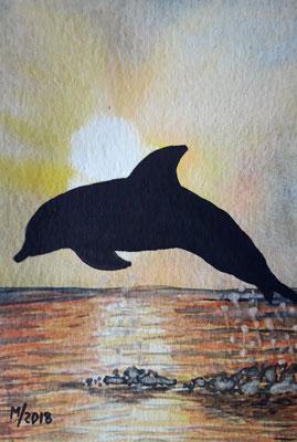 Delphin am Abend
