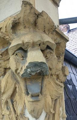 Löwe mit Zahnbeschwerden