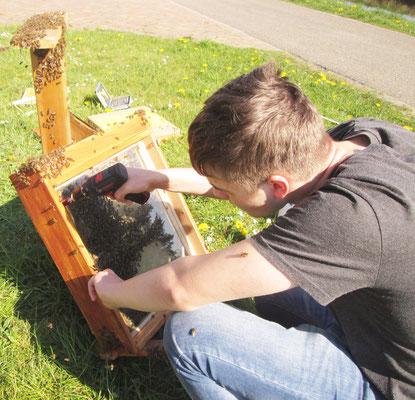 Schließlich schraubt Micha (17) Holzleisten an, die die Glasplatte halten.