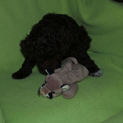 Anella war wie immer lieb :-)