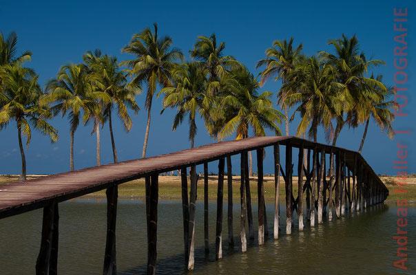 Westküste: am Strand von Kalpitiya