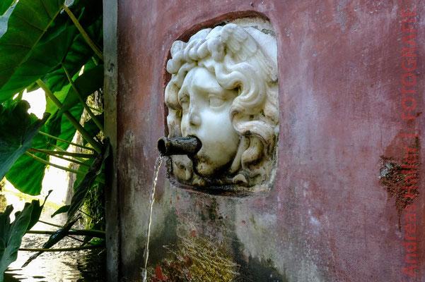 Im Heilkräutergarten über der Altstadt von Salerno