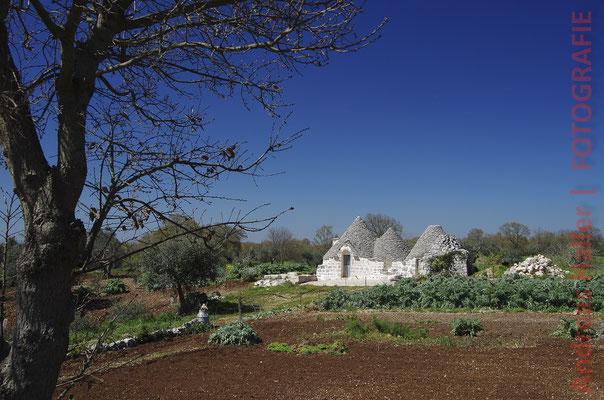 Trulli-Idyll in der Umgebung von Alberobello