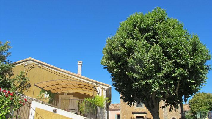 l hirondelle-bedoin-mont ventoux-gite-confortable-tout equipée-mont ventoux-été-vaucluse-rando