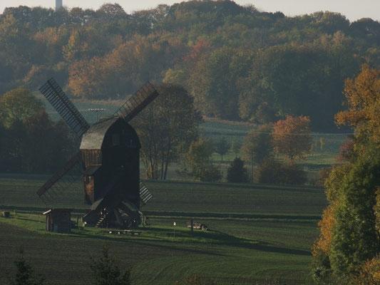 Ballstädter Bockwindmühle 180Jahre alt