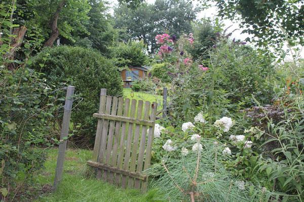 Naturnaher Garten mit Naturstrategie
