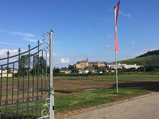 Auf dem südlich gelegene Hügel Kalvarienberg lerne und toben heute Kids und Schüler. Die massive Klostermauer am Fuß der Klavarienberg hat das Hochwasser der Ahr umgelenkt, sonst wäre Ahrweiler wohl noch stärker betroffen gewesen ...