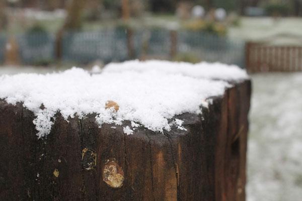Koestelgarten Winterstimmung