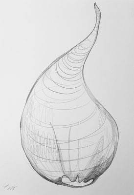 Seed sketch 2 / pencil on paper, 50x70cm, 2005