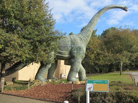 Brachiosaurus am Eingang zum Parque biologico da Gaia