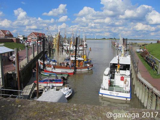kleiner Hafen von Ditzum