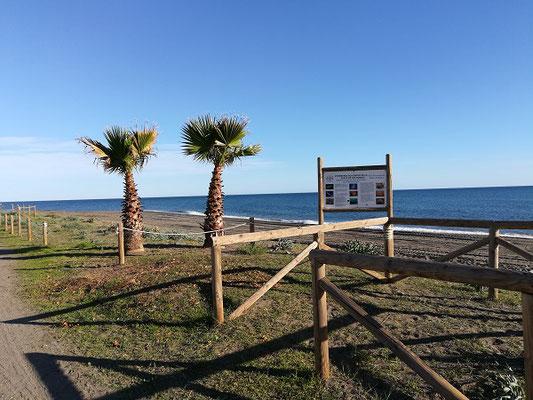 Strand von Torre de Benagalbon