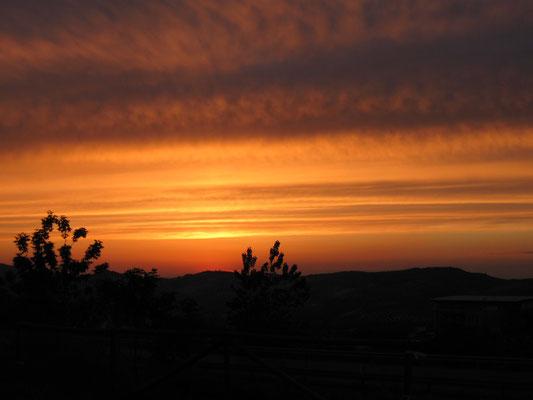 Sonnenuntergang in Doña Mencia