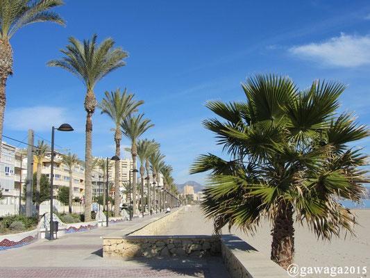 eine sehr schöne Strandpromenade