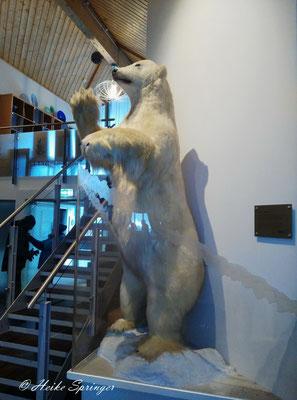 Auch im Hotel steht ein Eisbär