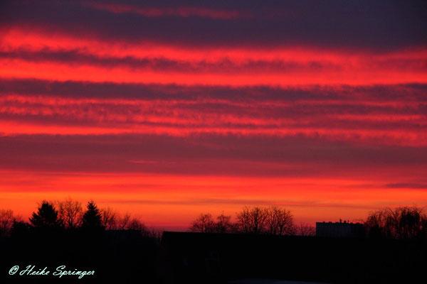 Sonnenaufgang über Wedel