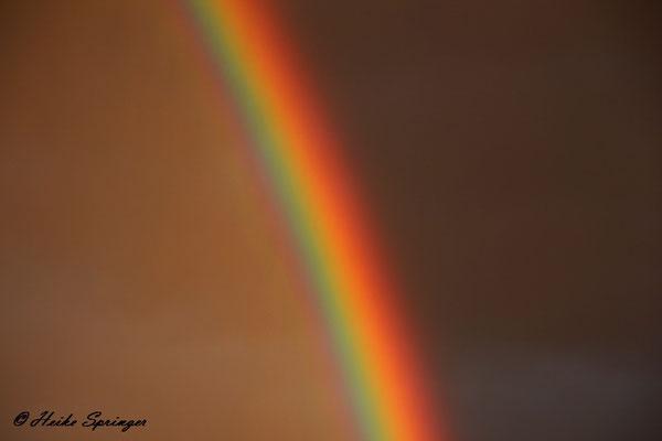Regenbogen über Wedel