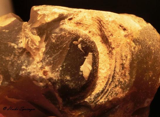 Teilabdruck eines Stromatolithen ?