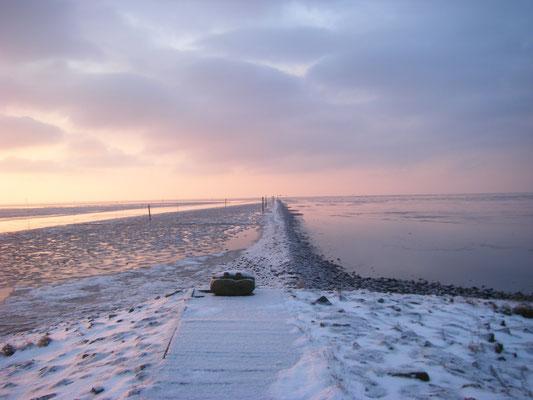Wintersparziergang auf dem Deich