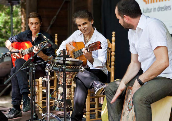 Bino Dola Trio, live in Kreuztal im Juli 2013