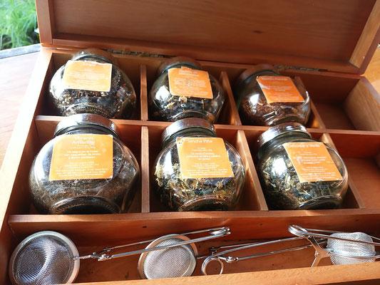 お茶を頼むと「どれにしますか?」とこれが出てきました。東京か?!