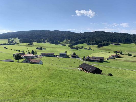 In dieser schönen Landschaft wundert es mich nicht, dass die Appenzeller juchzen. Mir ist auch gerade danach...