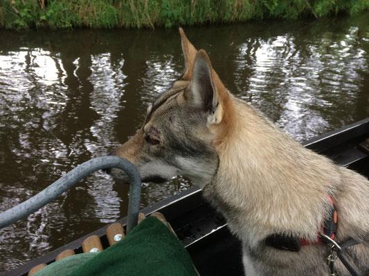 Kaya vor dem Beinahe-Sprung über Bord