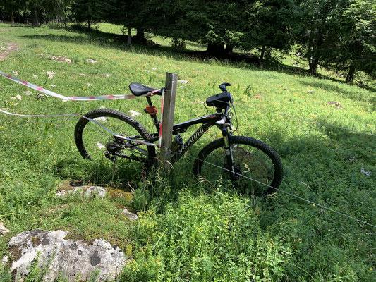 Vielleicht könnte man ja ein E-Bike an so einem elektrischen Zaun so aufladen 😳