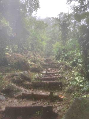 ... und noch mehr Stufen
