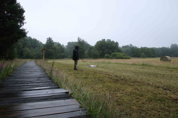 Kaya streikt wieder mal. Nicht wegen dem Regen oder Nebel, sondern weil sie einfach immer faul ist