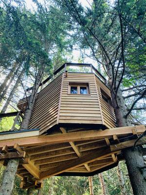 cabane dans les arbres en savoie