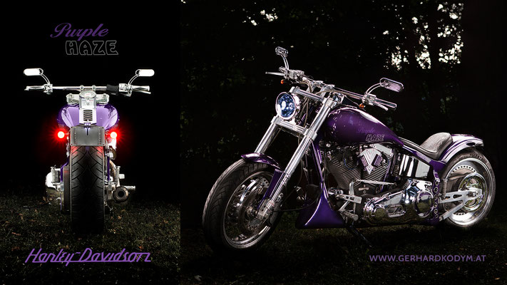Harley Davidson  (c) GerhardKodymPhotography
