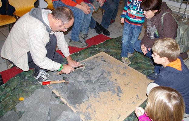 Fossiliensuche im Posidonienschiefer