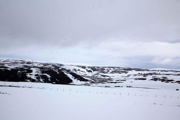 Schnee Wüste
