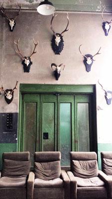 Eingang Naxoshalle Frankfurt