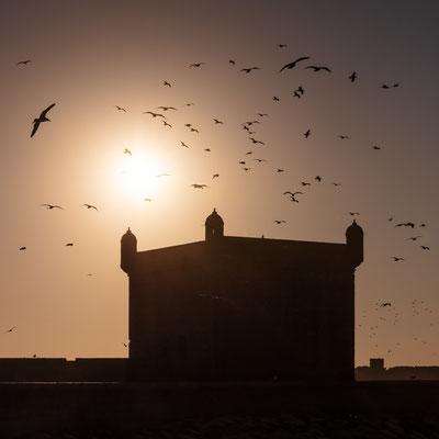 Essaouira port tower
