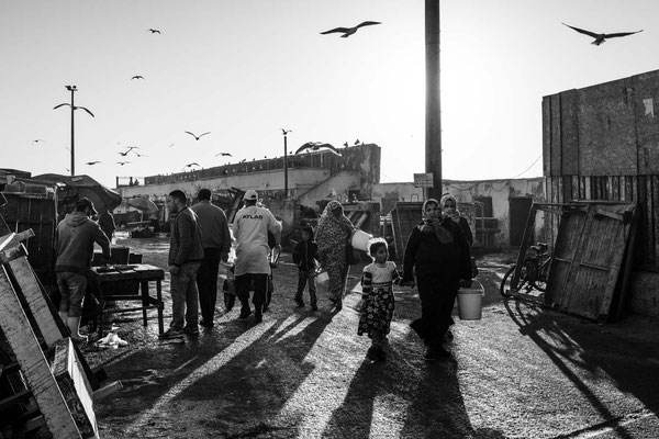 Essaouira port market