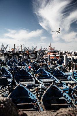 Essaouira fishing mess