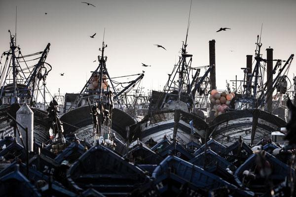 Essaouira fisher boats