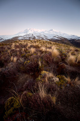 Blaue Stunde am Mount Ruapehu im Tongariro Nationalpark in Neuseeland (c) Salomé Weber
