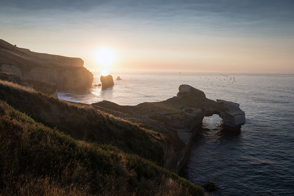 Tunnel Beach, Neuseeland (c) Salomé Weber