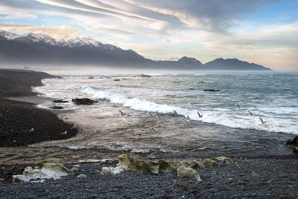 Kaikoura, Neuseeland (c) Salomé Weber