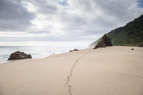 Scott's Beach – das erste Etappenziel des Heaphy Tracks.