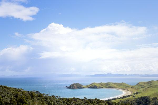 Blick auf Jackson Bay, Neuseeland (c) Salomé Weber
