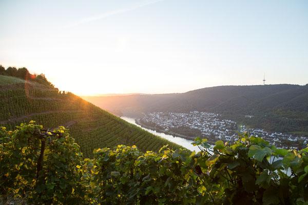 Urlaub in Deutschland: Winningen an der Mosel veranstaltet das älteste Weinfest Deutschlands. Ein Besuch ist es auf jeden Fall wert. (c) Salomé Weber