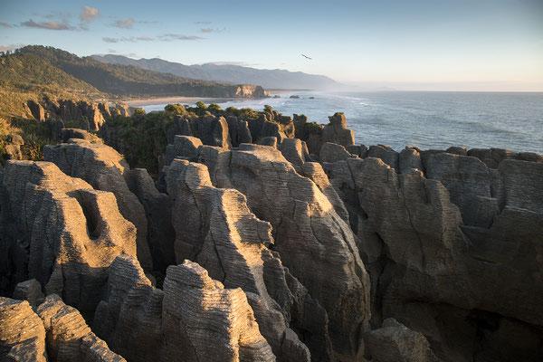 Pancake Rocks, Neuseeland (c) Salomé Weber