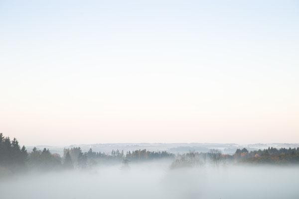 Urlaub in Deutschland: Früh Morgens liegt häufig Nebel auf den Feldern Deutschlands. (c) Salomé Weber