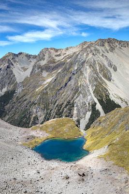 Bergsee im Nelson Lake Nationalpark, Neuseeland (c) Salomé Weber