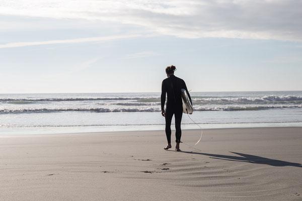 Wenn man Glück hat, begegnet man an der Westküste dem ein oder anderen Wasserbewohner.