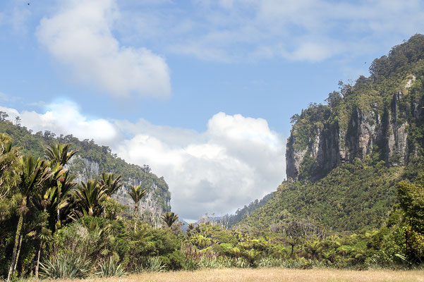 """Bei Punakaiki gibt es mehr als nur die berühmten """"Pancake Rocks"""". Der angrenzende Paparoa National Park ist definitiv ein Besuch wert."""